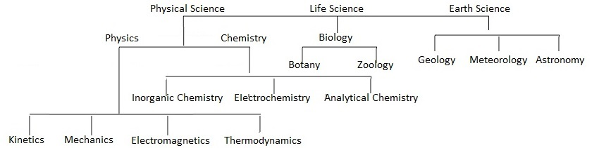 Different Branches of Science | BengalStudents